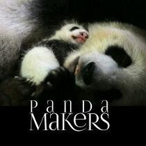 Panda Makers - Những chú gấu triệu đô